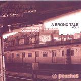 Radio Dijon : A Bronx Tale Mixed by Honey Dijon & Dan X (Peaches Records)
