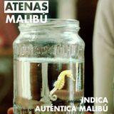Auténtica Malibú (live set) en Atenas Malibú #15