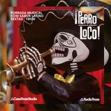 PERRO LOCO #34