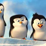 Los Pingüinos de Villa Revol Capítulo 25