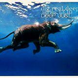 DigRealDeep_series_1310
