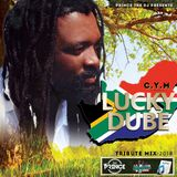 Dj Prince - LUCKY DUBE [TRIBUTE MIX]