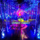Mellow Drive Mix: Electric Forest 2015 Edition