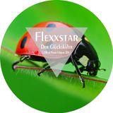 Flexxstar - Der Glückskäfer (Official Promo Februar 2014)