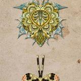 MARTIN VAN MORGEN-Terra Incognita Podcast