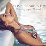 Alexandru Lupan aka Mr_Wolf - Summer Breeze #1