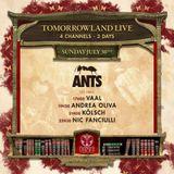 Nic Fanciulli @ Tomorrowland Belgium 2017 (Ants Stage) - 30 July 2017