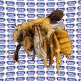 Allergy Season Radio No. 30 - Volvox Special