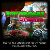 Psytronix-for_the_time_with_my_best_friends_on_the_Psychedelic_Circus_2012_Mix-Juni-2012