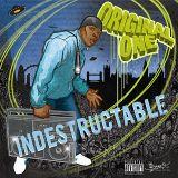 Indestructable - Album Sampler