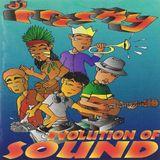 DJ Frisky - The Evolution Of Sound - NuNRG