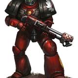 Der Rohdog Warrior of tact