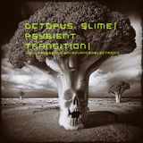 Octopus Slime - Psybient Transition (AdvElecPromo004)