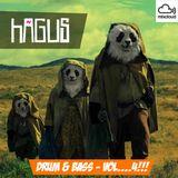 Hagus - DnB Minimix4 (2015-12-29)