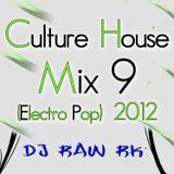 DJ RAW RK_Culture House Mix 9 (Electro Pop) 2012