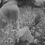 NEW! DAINOS DARBUI: IEVA x2