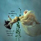 #84 - Bushberry Mix (Month of Sundays Vol.4)