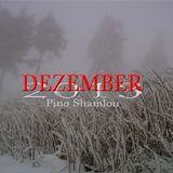 PINO SHAMLOU - DEZEMBER