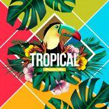 Brazilian_Music_author_and_remixes_vol_1