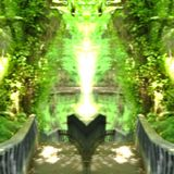 Dark Ecology #2 - Anima Mundi