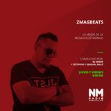 ZmagBeats Radio 'DJ del Mes' ''Alan Walker'' 04 Enero 2018