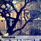 fsob013 - Visullucid
