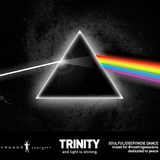 Trinity - Metting Sessions vol.3 / vegano hooligano non official mix