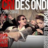 Le Cri des Ondes - Radio Campus Avignon - 22/11/11