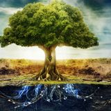 The Tree of Life Chill Mix