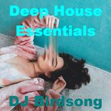 Deephouse Essentials