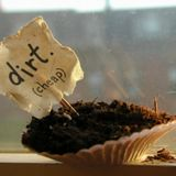 SONGS ABOUT DIRT