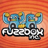 Fuzzbox Inc Anniversary 100 show on www.blueraccoon.fm !