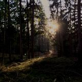maxhovel @ fremdland open air 04.08.21012