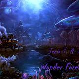 Jenia T & Dubmax - Wonderful Forest