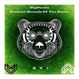 BigPanda Present - Sounds Of The Room #012
