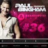 Paul Bingham - AVANTINOVA RADIO #36 - New Show!