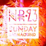 Sunday Salmagundi Nr. 23 - Mixed by Frankstarr, Fez Momo, Vatsgoed