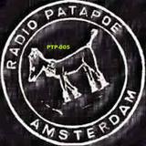 TheScorcher@Patapoe2019.03.11 PTP-005