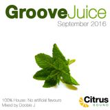Groove Juice Mojito - September 2016