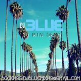 DJ BLUE 30 MINUTE DEMO (CLUBS, CORPORATE EVENTS, WEDDINGS, PARTIES)