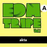 akta @EDMA TRIPE Vol.1 8-9