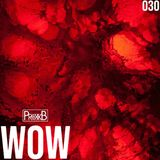 Dubstep | BLEEDING EARS MIX | wow 030