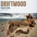 #429: Pandacetamol / Driftwood