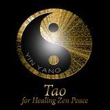 Επιλογή αρχείου DJ TAO SPIRIT - YIN YANG 2018