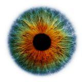 HAL 9000 - Open Eyes 2012 - DJ Set