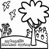 ANTUNELLO - Minimal Spring