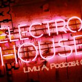 Electro House Mix | Liviu A Podcasts: Episode 005