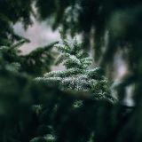 SIGNAll_FM - Soulful Christmas Mix 2018