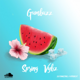 Gumbuzz - Spring Vybz [2017 Dancehall Afrobeat]