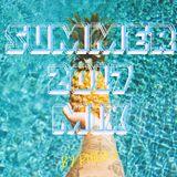 Summer 2017 Mix - Best Of Pop & Dance Music